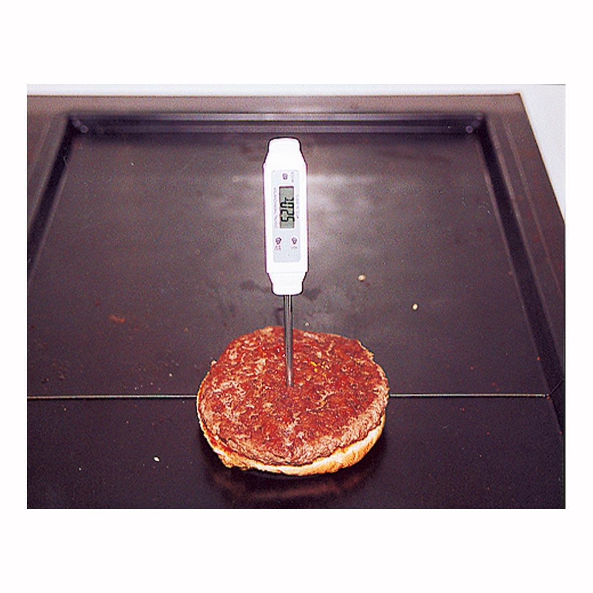30-1013-digitales-einstichthermometer-pocket-digitemp-s-anwendung1-1200x1200px.jpg