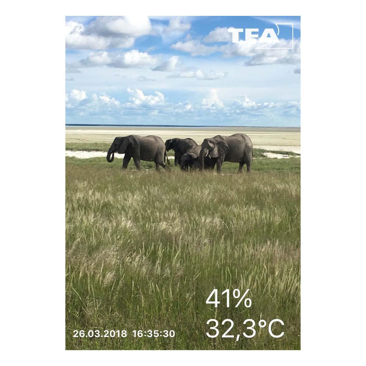 30-5035-02-thermo-hygrometer-für-smartphones-smarthy-app-anwendung5-1200x1200px.jpg