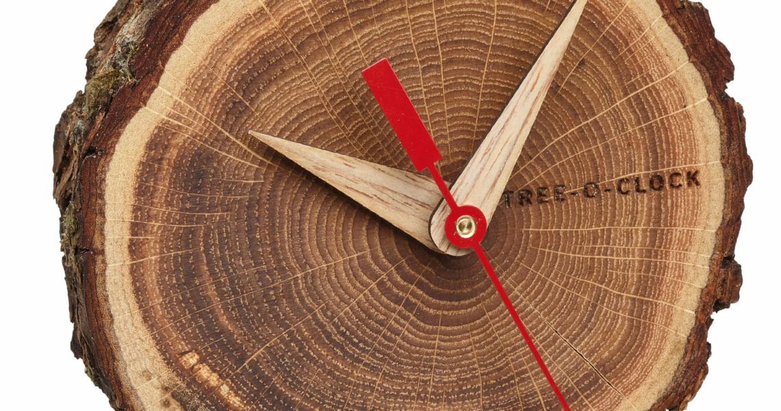 Analogue mantel piece/table clock made of oak TREE-O-CLOCK