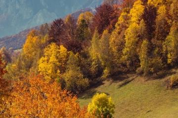 Wetterprognose für den Herbst