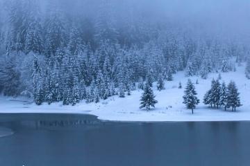 See im Winter mit Nebel