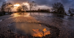 Herbstwetter mit Regen und Laub