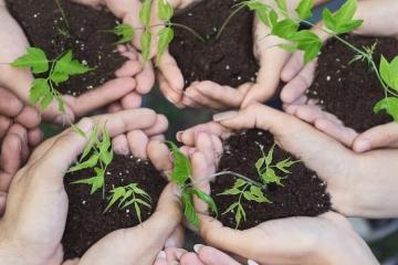 Eine Gruppe von Menschen, halten Erde mit einem jungen Baumpflanzen in den Händen. TFA spendet 250 Bäume für die Initiative Plant for the planet und geht einen weiteren Schritt in Richtung Nachhaltigkeit. Mehr dazu erfahren Sie im TFA magazin