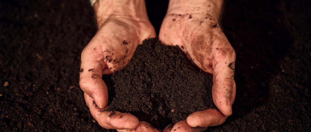 Kompostieren mit TFA Messgeräten