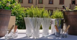 Glasstrohhalme sind wiederverwendbar, umweltfreundlich, bruchsicher und hygienisch.