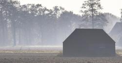 Novemberwetter Landschaft mit Nebel und Scheunen vor einem Wald
