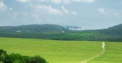 Das Landschaftsfoto zeigt eine grüne Wiese bei wolkigem Himmel, aber Sonnenschein. Dieses Motiv beschreibt den Wettertrend für Deutschland für die nächsten Tage.