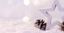 Zwei Tannenzapfen und ein Deko-Stern aus Holz stehen im Schnee. Es ist das Headerbild für den Wettertrend für Deutschland für die nächste Woche von TFA Dostmann.